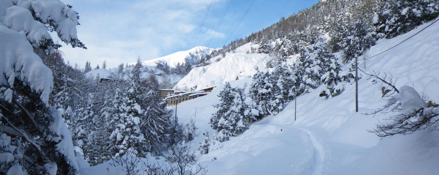 hiver neige et merveilles